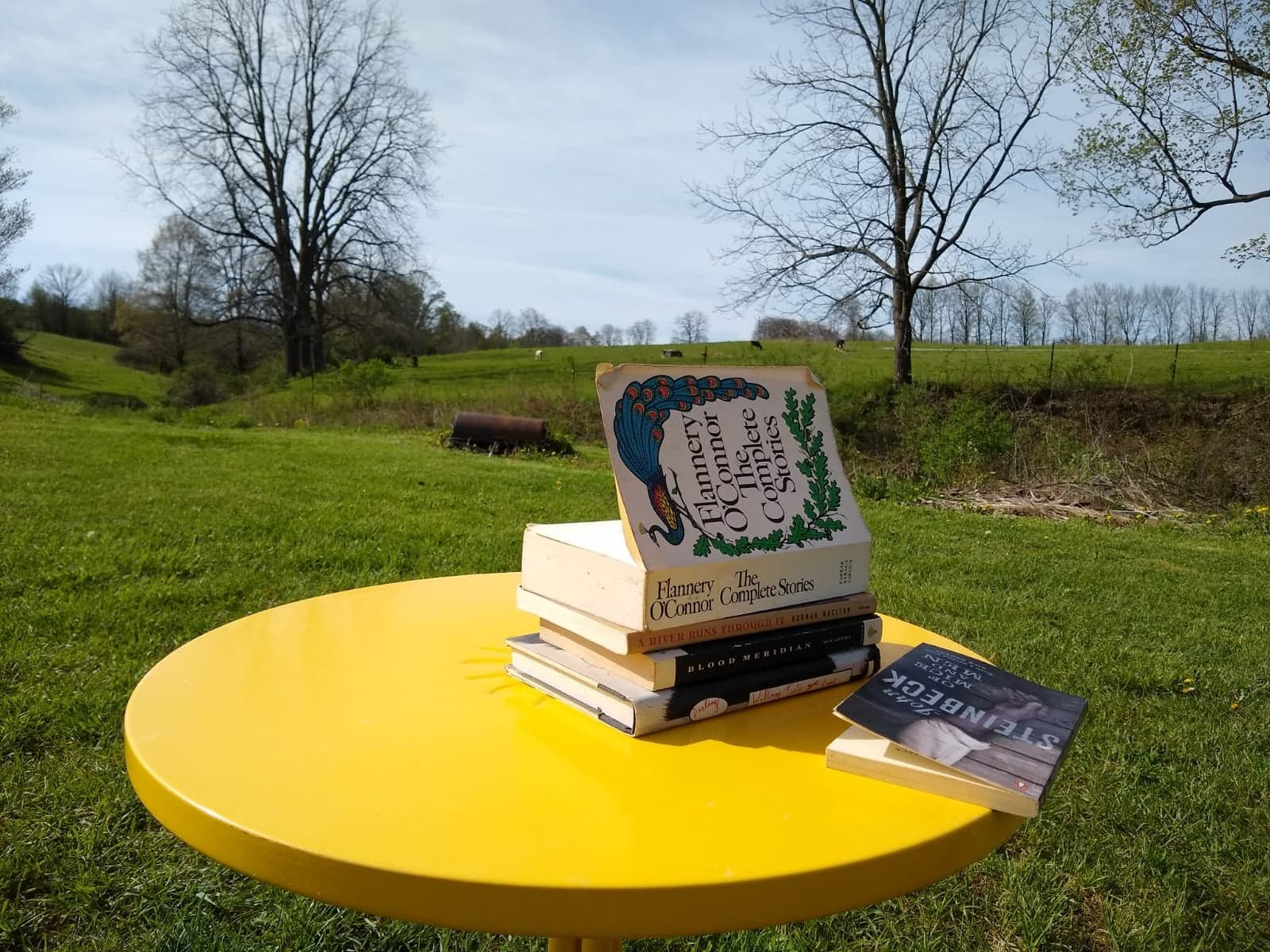 Best Rural Novels: A List of 10 to Get Started