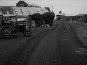 Martin Keaveney tells of rural life in Ireland