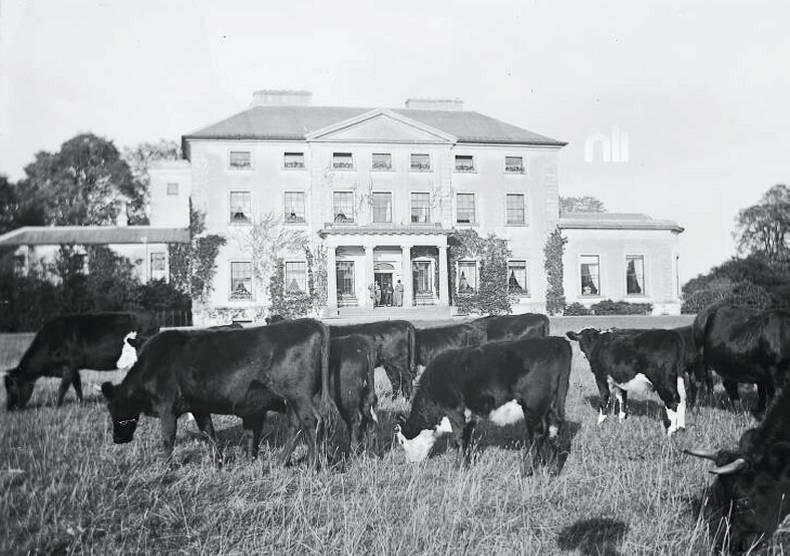 Taylor's Field, used to be Clonbrock House