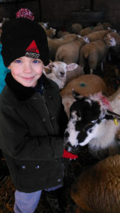 a kid with a sheep