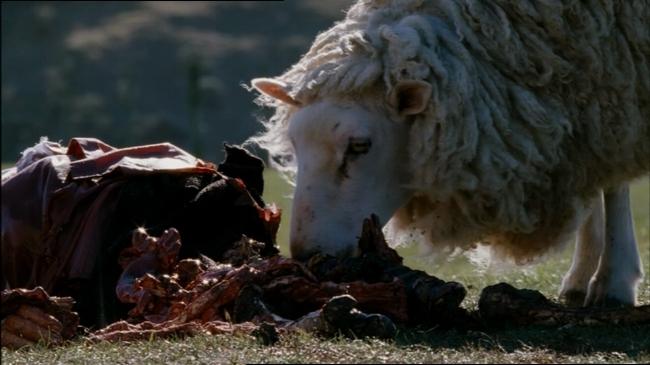 Black Sheep is a NZ farm film