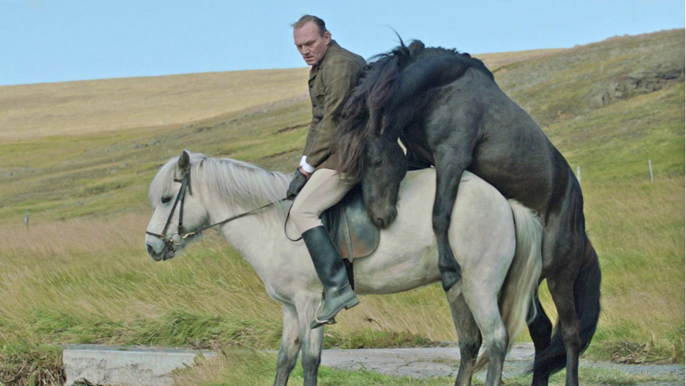 Of Horses and Men an Icelandic movie on agriculture