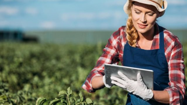 Sociable Farming